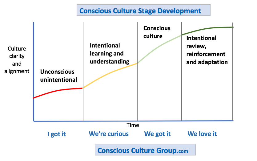 conscious culture™ development - stages