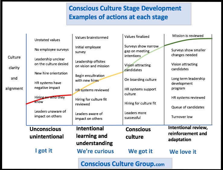 Conscious Culture Development - stages with detail