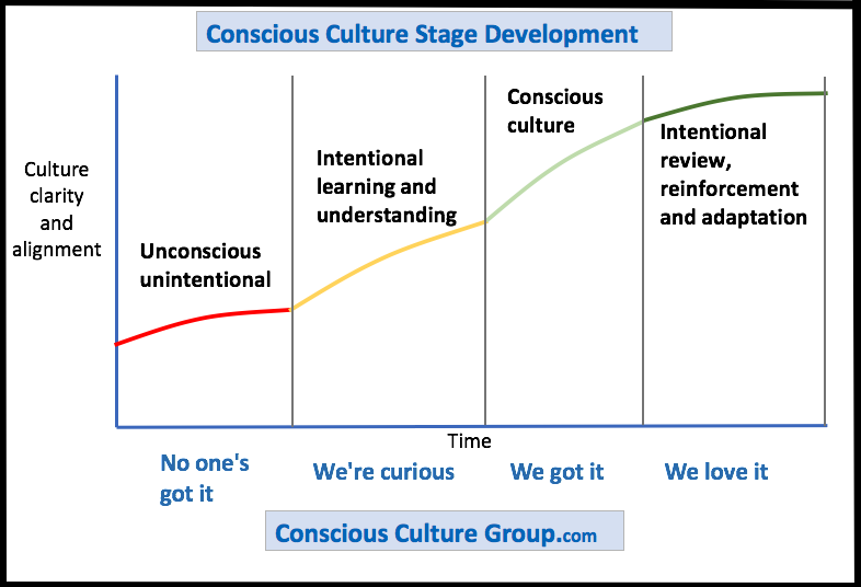 4 Stages Of Conscious Culture Development